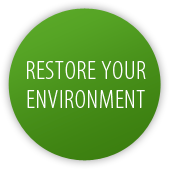 Restore your environment
