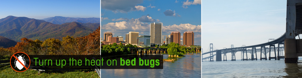 Eliminate bed bugs - Virginia